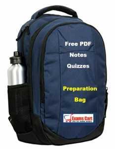 Data Interpretation Preparation Bag